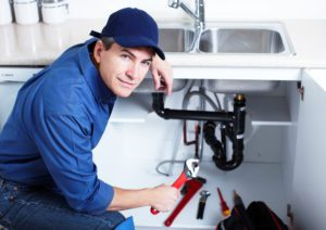 local plumber collinsville il