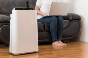 In home air purifier for homeowners with pets in Belleville, Illinois